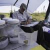 Far North Biodiversity Project specimens