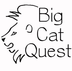 Nick Acheson's Big Cat Quest